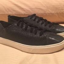 Cole Haan Hendrix Lace Sneaker Black Snake Print Women's Sneakers Flats Size 8 Photo