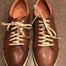 Cole Haan Men's Grandpro Crosscourt Ii Casual Sneakers Leather Shoes Size 8 Photo