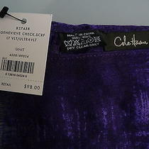 Cole Haan Scarf - Genevieve - New With Tags - 100% Wool - Purple Colors Photo