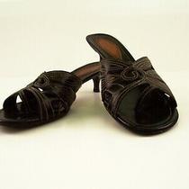Cole Haan Womens Sz 6 B Black Leather Sandal Thongs Photo