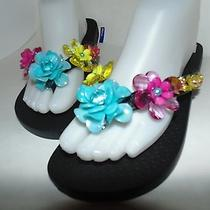 Colorful Summer Sandals  Photo