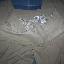 Columbia Sportswear-Womens-Outdoor Pants/shorts-Size 14-Tittanium Photo