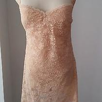 Cosabella Never Say Never Sexy Shaper Chemise Teddy  in Blush 180 Size Lgg Photo