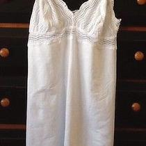 Cosabella Nightie--Dolce---Gorgeous Photo