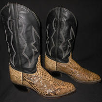 Cowboy Boots Snake Skin Natural/black Fancy Stitching  8 D Photo