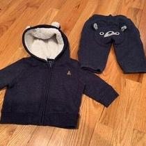 Cozy Navy Baby Gap Teddy Bear Sweatpants and Zip Up Hoodie Size 3-6 Months Photo