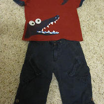 Crazy 8 Alligator Shirt Baby Gap Navy Blue Roll Up Pants 2t Photo