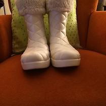 Croc Boots Photo