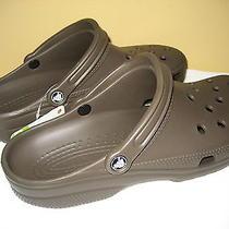 Crocs Classics  /mens 13 Photo
