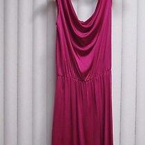 Cute Express Cocktail Dress Rayon Magenta Size X-Small Christmas Prom Evening Photo
