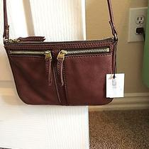 Cute Fossil Brown Leather Bag Nwt Photo