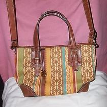 Cute Fossil Crossbody Handbag  Photo