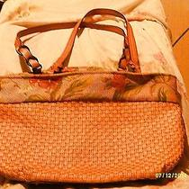 Cute Fossil Hand Bag Photo
