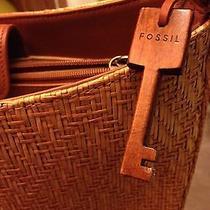 Cute Fossil Straw Handbag Photo