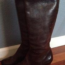 Cute Frye Lisa Tall Zip Up Brown Leather Riding Boot - Size 8 Medium Photo