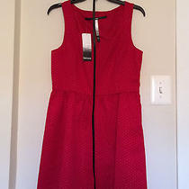 Cute Holiday Red Fit & Flare Kensie Dress Photo