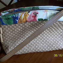 Cute Summer Fossil Purse  Photo