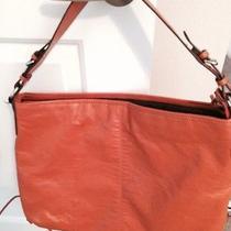 Cute Women's Orange Purse/handbag Photo