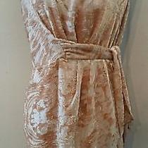 Cynthia Steffe Blush Metallic Burnout Velvet Dress M 6/8 Photo