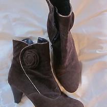 Dark Brown Faux Suede Beacon Cute Short Boots With Rose Gold Piping 8w Photo