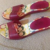 Dark Purple Coach Summer Shoes Size 9  Photo