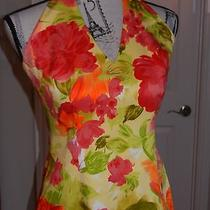 David Meister Stretch Floral Halter Sundressbeautiful Bright Colorssize 6nwot Photo