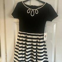 Dear Creatures Anthropologie Black & Tan Dress Striped Lower Skirt Size S Photo