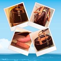 Deauville Louis Vuitton Bag Photo