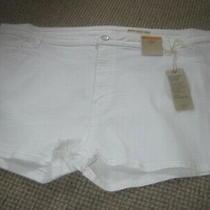 Denim White Shorts Size 24 83% Cotton New & Tag Marks & Spencer  Short  Photo
