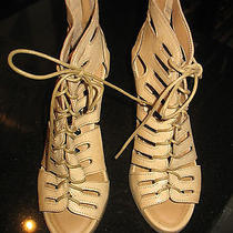 Designer Ankle Stylish Booties Photo