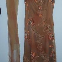 Designer Evening Gown Size10 Photo