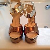 Designer Heels  Photo