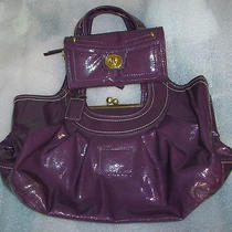Designer Inspired Hobo Handbag Purse and Accordian Wallet Eggplant Nwt  Photo