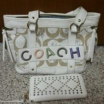 Designer Inspired Purse and Wallet Photo