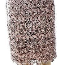 Designer New Pink Blush Women's Size 8 Straight Pencil Crochet Lace Skirt 99 Photo