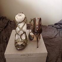 Designer Shoe Photo