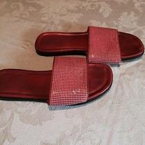 Designer Women's Sandals  Photo