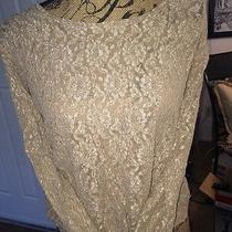 Diana Marco Blush Lace Pullover Size 14/15 Large Photo