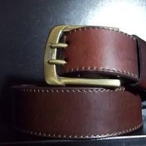 Dickies Brown Leather Belt Photo
