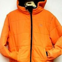 Dickies Kj703 Orange Youth Performance Puffer Jacket  Photo
