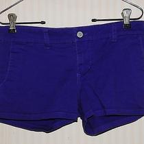 Dickies Purple Short Summer Shorts - Size 1 Photo