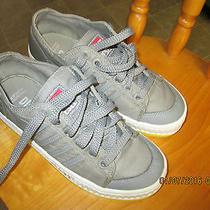 Diesel Sneaker Photo