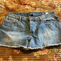 Distressed Button Fly Light Wash Denim Jean Gap Shorts Boyfriend Cut Off Size 8  Photo