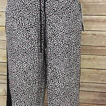 Dkny Jersey Knit Pajama Capri Pants Cheetah Black Pink Xsmall Nwt Photo