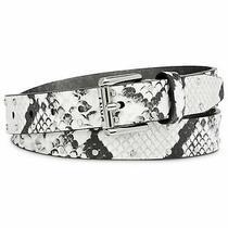 Dkny Studded Snake-Embossed Belt - White/silver Photo