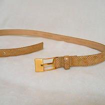 Dkny Tan/ Gold Reptile Print Italian Calfskin Belt Size Large Made in Usa Photo