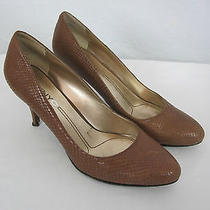 Dknyc Shoes 8 Brown  Photo