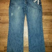 Dnky Downtown Brooklyn Jean Size 13 Low Rise/slim Fit/slight Bootcut Nwt Photo
