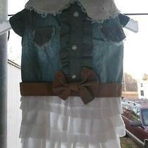 Dog Dress She Will Look Adorable in This blue&white Ruffle Leatherbelt Outfit Photo