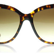 Dolce and Gabbana 4244 Tortoise 502/13 Sunglasses Photo